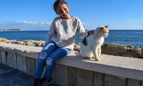 ネコに触れ合う少女