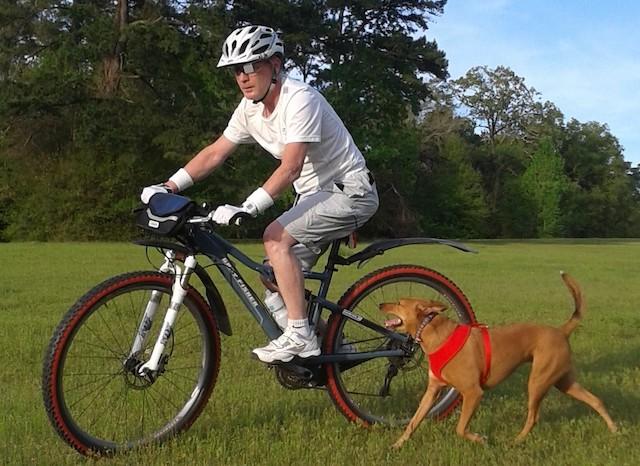 自転車で犬と戯れるようす