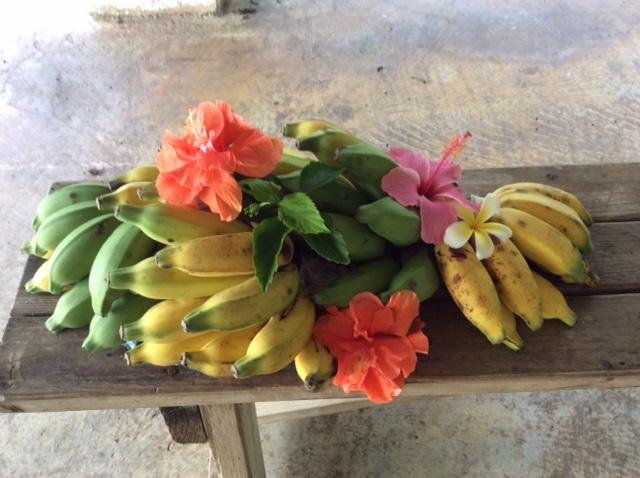 バナナとハイビスカス