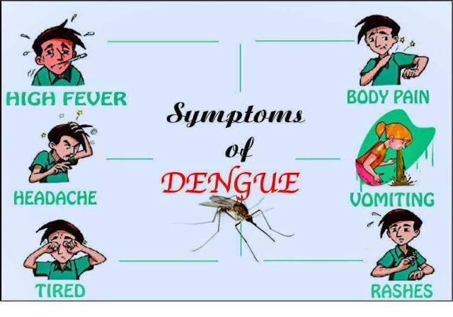 蚊から感染して発症する症状のいくつかが記された図